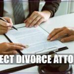 Perfect Divorce Attorney